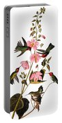 Audubon: Hummingbird Portable Battery Charger