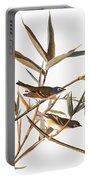 Audubon: Vireo Portable Battery Charger