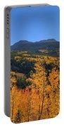 Autumn Bonfire Portable Battery Charger