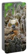 Baby Great Horned Owl Portable Battery Charger