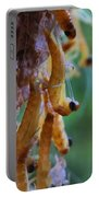 Baby Praying Mantises Portable Battery Charger