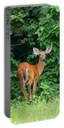 Backyard Deer Portable Battery Charger