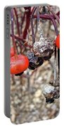 Beach Rose Hips - Rosa Rugosa Portable Battery Charger