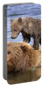 Bear Back Rider Portable Battery Charger