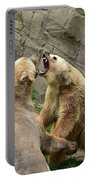Bears Portable Battery Charger