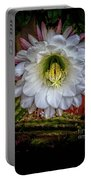 Beautiful Cactus Portable Battery Charger