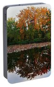 Beautiful Fall ... Portable Battery Charger