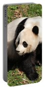Beautiful Giant Panda Bear In The Wild Portable Battery Charger