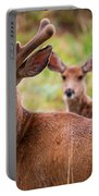 Beautiful Mule Deer Herd Portable Battery Charger