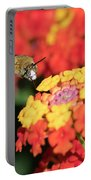 Bee, Bumblebee, Flying To A Flower, In Marseille, France Portable Battery Charger