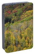 Big Cottonwood Canyon Fall Colors Portable Battery Charger