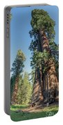 Big Tree Trail - Sequoia National Park - California Portable Battery Charger