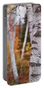 Birch Trees Fall Scenery Portable Battery Charger