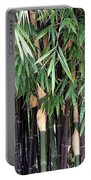 Black Bamboo Portable Battery Charger