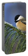 Black-capped Chickadee Portable Battery Charger by Tony Beck