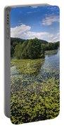 Black River Hancza In Turtul.  Portable Battery Charger