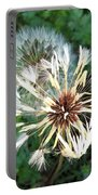 Blown Wishes 2 Portable Battery Charger