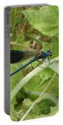 Blue Dragonfly On Leaf Portable Battery Charger