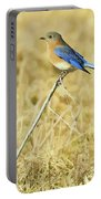 Bluebird In February Portable Battery Charger