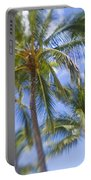 Blurry Palms Portable Battery Charger