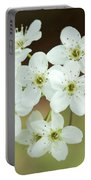 Bradford Pear Flower Portable Battery Charger