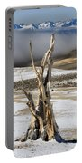 Bristlecone Fog And Sierra Nevada 1 Portable Battery Charger