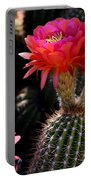 Sonoran Spring Portable Battery Charger