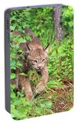 Canada Lynx Portable Battery Charger