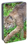 Canada Lynx Lynx Canadensis Portable Battery Charger