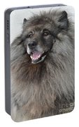 Canine Beauty Portable Battery Charger
