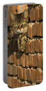 Cat On A Brick Wall Portable Battery Charger