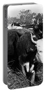Cattle: Longhorns Portable Battery Charger