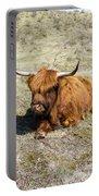 Cattle Scottish Highlanders, Zuid Kennemerland, Netherlands Portable Battery Charger