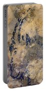 Cave Art: Ibex Portable Battery Charger
