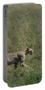 Cheetah On The Serengeti Portable Battery Charger