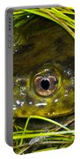 Chilean Widemouth Frog Portable Battery Charger