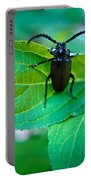 Climbing Beetle Portable Battery Charger