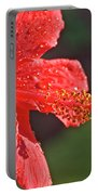 Close Up Of A Red Hibiscus Portable Battery Charger