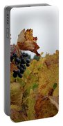 Colchagua Valley Vineyard  Portable Battery Charger