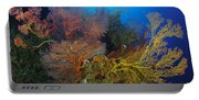 Colorful Assorted Sea Fans And Soft Portable Battery Charger