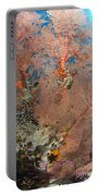 Colourful Sea Fan With Crinoid, Papua Portable Battery Charger