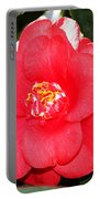 Coral Camellia At Pilgrim Place In Claremont-california  Portable Battery Charger