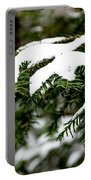 Country Winter 10 Portable Battery Charger
