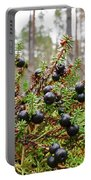 Crowberry Portable Battery Charger