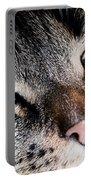 Cute Cat Close-up Portrait Portable Battery Charger