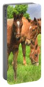 Cute Colts Portable Battery Charger