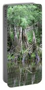 Cypress Knees  Portable Battery Charger