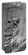Cypress Trees I V Portable Battery Charger