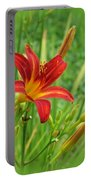 Daylily On Green Portable Battery Charger