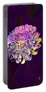 Deaf Skabiose Scabiosa Columbaria  Portable Battery Charger